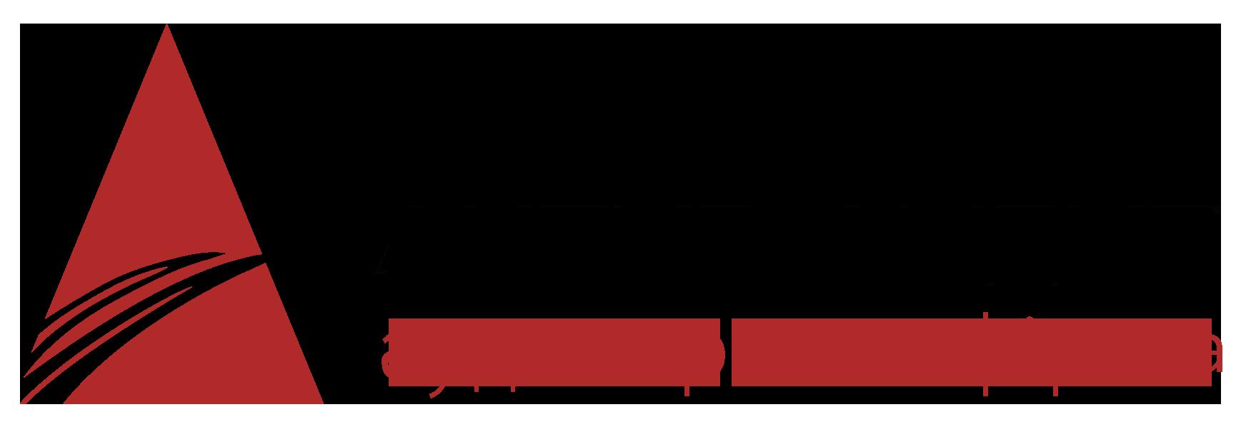 Актив Аудит